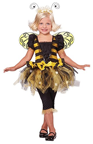 Sunny Honey Bee Costume, One Color, 4-6/Large (Honey Bee Kostüme Für Kinder)