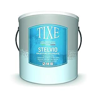 TIXE 650.204 Stelvio IDROPITTURA Traspirante 04 LT, Bianco 41llz6HovcL. SS300