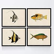 Nacnic Set de 4 láminas con pez Colorido Efecto Vintage Tono Amarillo. Amuntai. Composicion