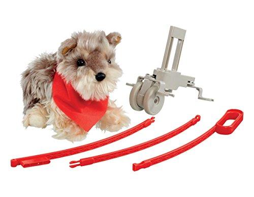 Cachorro de perro de juguete que anda a tu lado: Tanner, el pequeño Yorkshire.