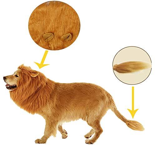 Oncpcare Fancy Lion Hair Dog Kleidung Kleid für Halloween, Machen Sie Ihren Hund König Löwe Mähne Perücke Kostüm verstellbar waschbar bequem