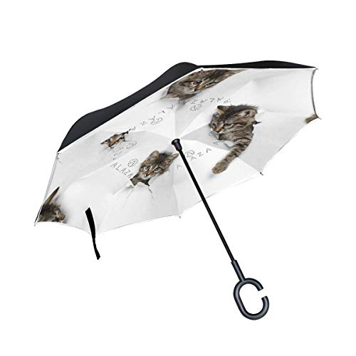 Mnsruu Paraguas invertido Gatos en Agujeros Doble Capa Plegable Paraguas Resistente al Viento UV Paraguas de Viaje para Mujeres y Hombres