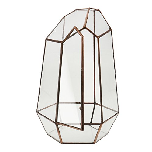 Irreguläre Mini Glas Terrarium Geometrisches Glas Sukkulente Pflanzen Pflanzgefäß Deko - 12 x 12 x 19cm -