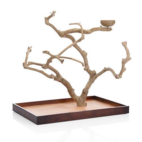 Wagner's   Java Tree Tischfreisitz aus Kaffeeholz für Großsittiche & Papageien
