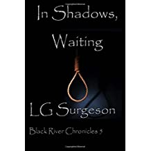 In Shadows, Waiting: Volume 4 (The Black River Chronicles)