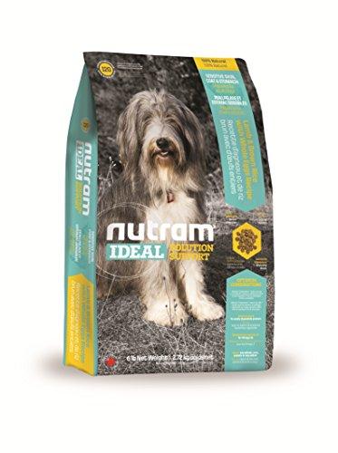 Nutram Hund empfindliche Haut/Mantel/Magen Lamm- und brauner Reis mit ganzen Ei Rezept, 2.72kg
