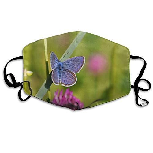 Vbnbvn Unisex Mundmaske,Wiederverwendbar Anti Staub Schutzhülle,Flower Cute Butterfly Closeup Unisex Creative Mouth-Masks Washable 100% Polyester Breathable Health Anti-Dust Half Face Masks
