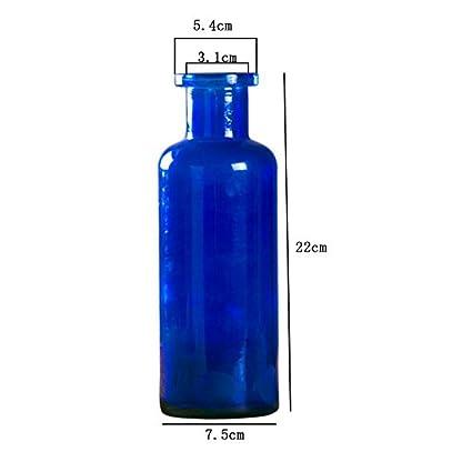 Outflower 1PC Azul Jarrón de Vidrio de Color Jarrón de Vidrio cilíndrico Florero de Vidrio Transparente Decoración del hogar Floreros,22 * 7.5cm