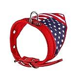 Delicacydex Flagge Stil Hundehalsband Einstellbare Haustier Hund Katze Halsband Dreieck Schal Halstuch Klassischer Hund PU Leder Welpe Kragen - Rot S