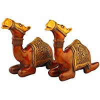 Camel paio 22,86 cm (9