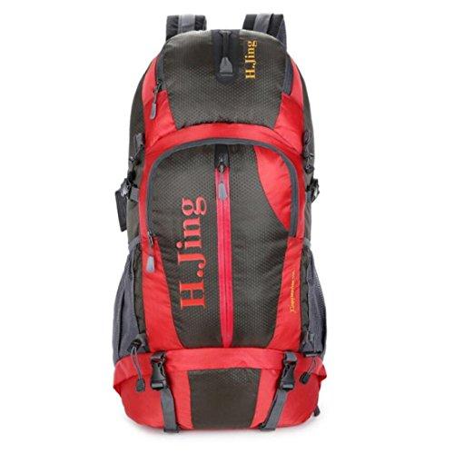 Z&N Capacità 30-40L Backpack Borsa A Tracolla Da Viaggio All'Aperto All'Aperto Borsa Sportiva Fitness Borsa Per Studenti Zaino Di Uso Quotidiano Anti-Strappo Tracolla Regolabile C 30-40L C