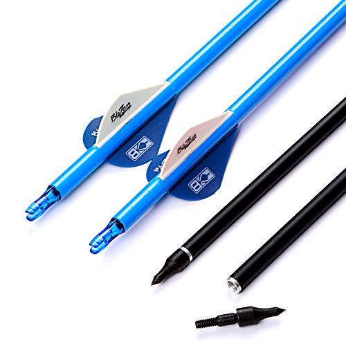 12 × 31 Zoll Carbon Pfeile 2 Zoll Blazer Vanes Pin Nock Adapter Nock Collar Kohlenstoffpfeile Spine 250-600 Schraubenspitzen Pfeile Für Compound Recurve Bogen Jagd Ziel Schießen (Blau, Spine 300)