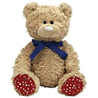 Ty Beanie Buddy - Independence the Bear with Red Paws with Silver Stars USA by Ty