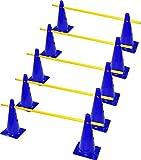 RHINOS sports Steckhürdenset 5er | 38cm | blau
