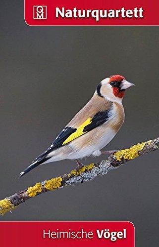 Heimische Vögel Naturquartett