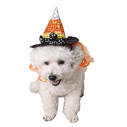WINNER POP Haustier Halloween Zubehör, Weihnachtsfeier Fotos Lustiger Kopfschmuck Hutkragen Party Cone Hat Kostüm für Hunde und Katzen Geschenke, - Beängstigende Kürbis Kostüm