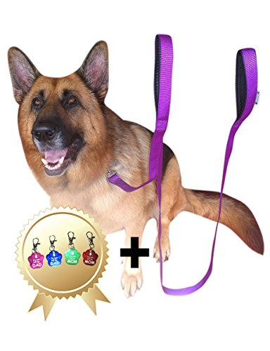 lead-dog-25m-purple-dog-leads-long-double-handle-lead-for-large-dogs-bonus-dog-tag-extra-long-dog-le