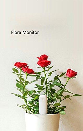 Xiaomi Smart de Moniteur, ollivan Xiaomi Bluetooth Smart plantes Moniteur écran Flore plantes herbe Fleurs sol nutriments l'eau clair Smart Détecteur de capteur avec une base de données de 900types de plantes de durcissement Méthode peut Match 3000sortes de plantes pour aquarium Jardin Plantes