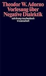 Vorlesung über Negative Dialektik: Fragmente zur Vorlesung 1965/66 (suhrkamp taschenbuch wissenschaft)