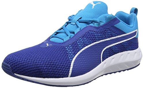 Puma Flare 2, Chaussures de Running Compétition Homme Bleu (True Blue-blue Danube 01)