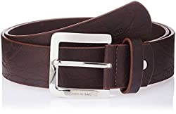 Peter England Mens synthetic Belt (8907411584667_Large_Brown)
