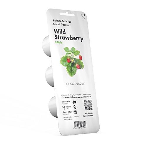 Click & Grow recharges pour jardinière Smart Herb Garden Fraise des bois Pack de 3