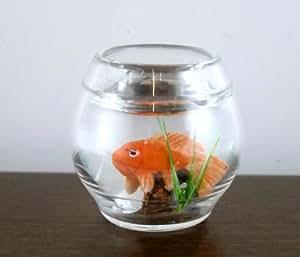 Dolls house miniature accessory pet fish bowl orange for Fish bowl amazon