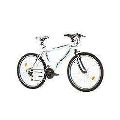 "Bikesport ACTIVE Bicicletta Mountain Bike 26"" Altezza telaio: 44 cm, Shimano 18 cambios"