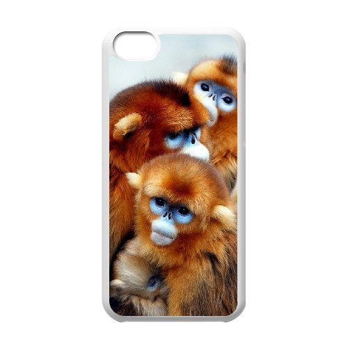 LP-LG Phone Case Of Monkey For Iphone 5C [Pattern-6] Pattern-4