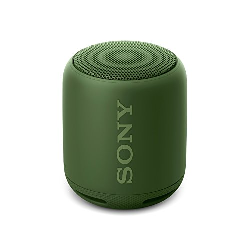 Sony Extra Bass SRS-XB10 Portable Splash-proof Wireless Speaker with Bluetooth and NFC (Green)