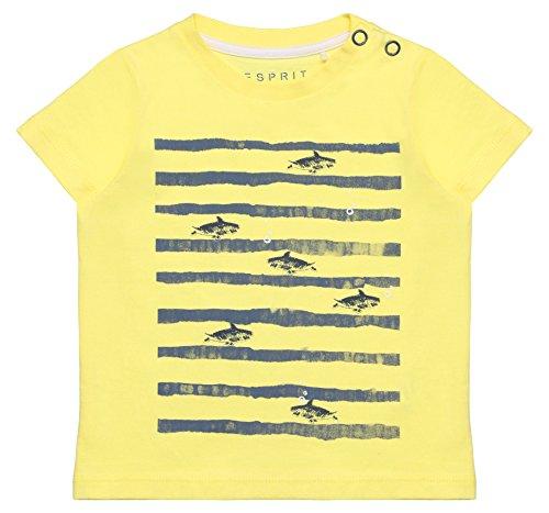 ESPRIT Kids Baby-Jungen T-Shirt RL1008202, Gelb (Straw 712), 74