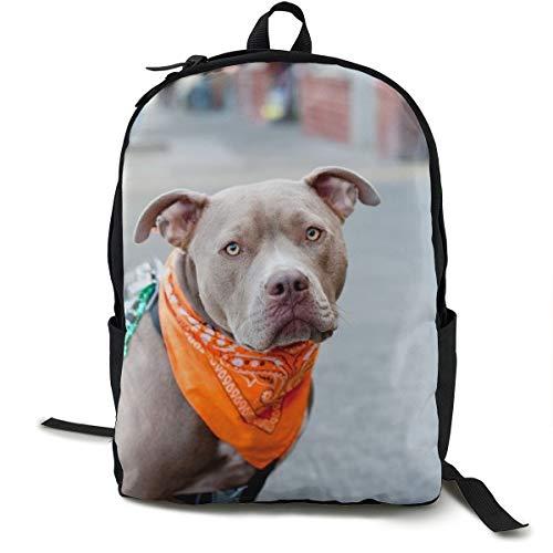 Hunde Face Bandana Leash Schulrucksack Schulrucksack Büchertasche Reise Laptop Rucksack Casual Daypack für Kinder Studenten Erwachsene -
