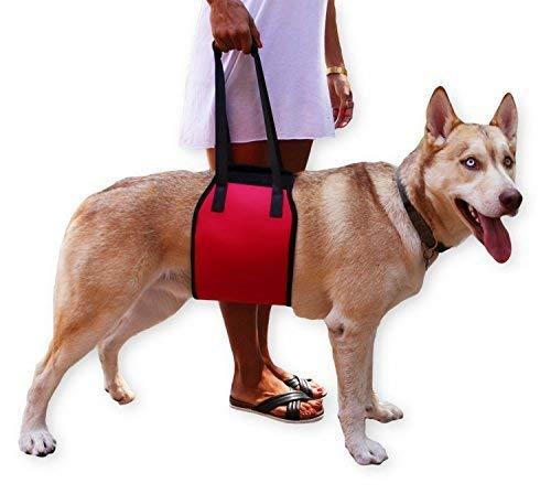 Hundegeschirr Tragehilfe, Jhua Dog Support Harness Hundelift Unterstützung Rehabilitation Harness mit Handle für schwache Hinterbeine (XL)