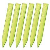 SUNPLAY 6er Set 30 cm lange fluoreszierende Kräuterstecker Gartenstecker Pflanzschilder für Kräuter & Gemüse - Farbe: Grün - Liebstöckel Kresse Schnittlauch Knoblauch Fenchel Eberraute