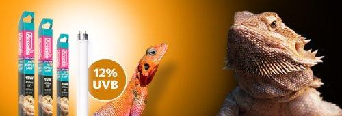 Arcadia D3+ 12-Percent Reptiles Lamp