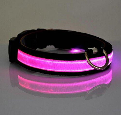LED Halsband Leuchthalsband S/M/L/XL Hundehalsband Sicherheitshalsband Nylon Da.Wa - 6
