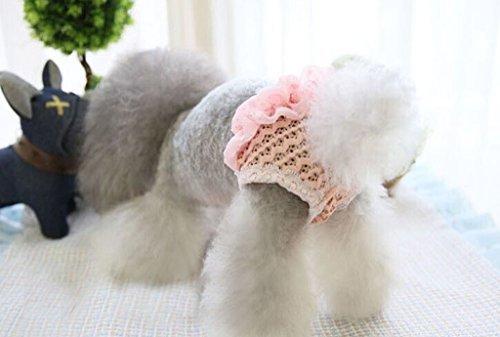 Tiny - Pantalón sanitario pequeño para perro, talla M, color rosa