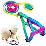 Petlicious & More Petliccious & More Rainbow Color Puppy Harness & Leash Set Small Dog Harness Leash (Harness + Leash)