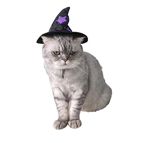 Weibliche Kostüm Zauberer - Your little world Hunde-Kleidung, für Halloween, Zauberer, Witziges Teddy-Kleid, Schwarz