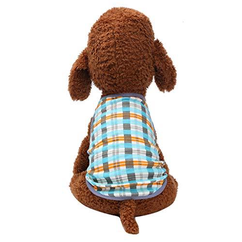 Timogee Hundemantel Haustier Mantel Hund Kleider Mantel Kleidung Pullover Haustier Welpen T-Shirt