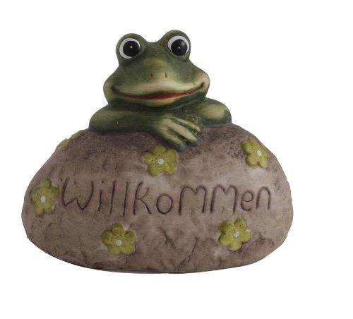 Frosch auf Stein Willkommen