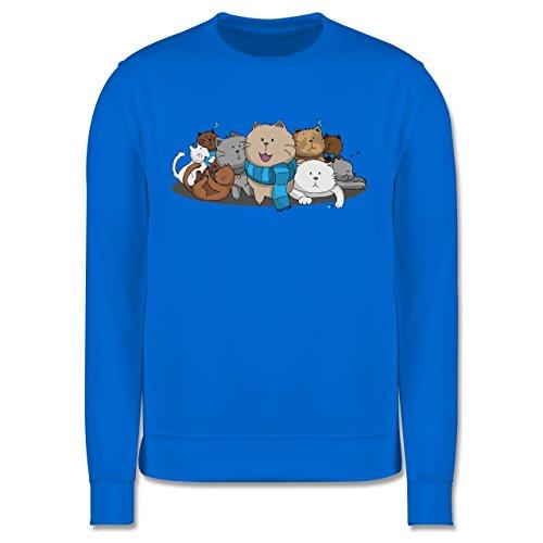 Katzen - süße Katzen - Herren Premium Pullover Himmelblau