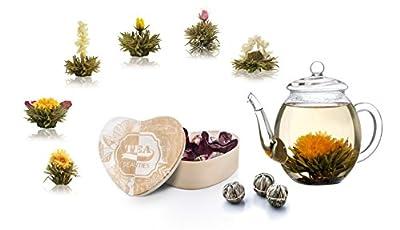 Creano Coffret cadeau fleurs de thé le thé dans boîte en bois–forme de cœur de 6variétés Thé Blanc + Théière en verre 500ml