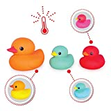 Tolo 50501 - Farbige Enten, Spiel