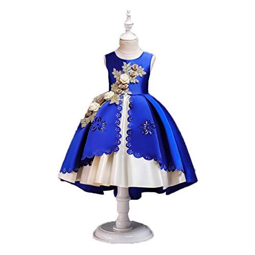 Bühne Tragen Tanzkostüm - HUO FEI NIAO Mädchen tragen-Kleid Prinzessin Kleid Figur Net Kleid Weste Ballett Fairy Cosplay (Color : Blue, Size : 110)