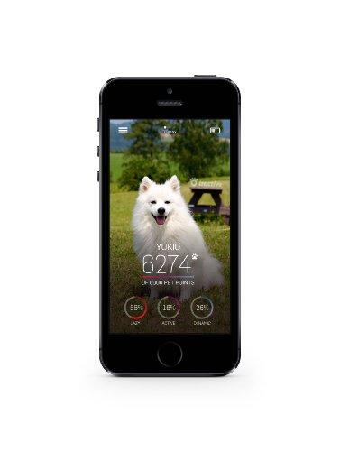 Tractive MOTION Pet Activity Tracker 6