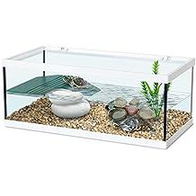 fr aquarium pour tortue d eau
