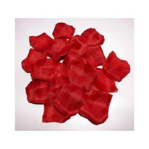 floristikvergleich.de 500 Rosenblätter Rosen Rosenblütenblätter Farbe Rot Bordeaux