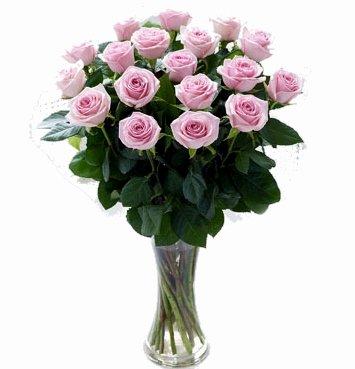 ramo-de-18-rosas-naturales-frescas-en-color-rosa-flores-a-domicilio