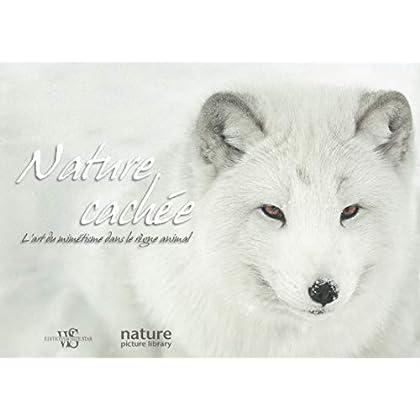 Nature cachée - L'art du mimétisme dans le règne animal